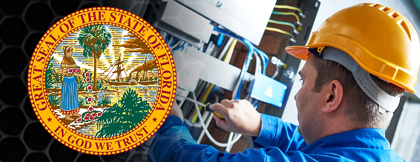 florida seal electrician
